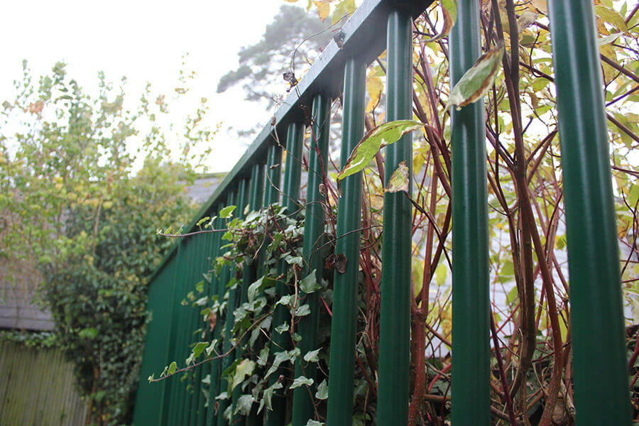 Green metal vertical bar fencing in garden